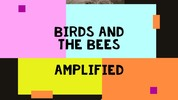 Thumbnail BIRDS AND THE BEES : AMPLFIED